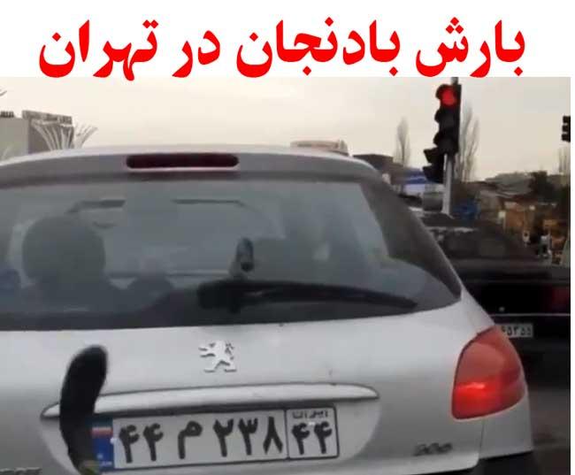 بارش بادنجان در تهران